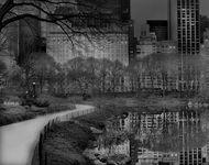 Deep In A Dream - Central Park - 2010