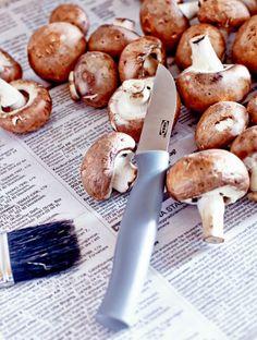 Nahaufnahme von frisch gepflückten Pilzen und einem kleinen IKEA Messer.
