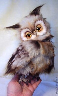 Owl be ~ what a cutie! Felt Animals, Cute Baby Animals, Animals And Pets, Funny Animals, Beautiful Owl, Animals Beautiful, Owl Bird, Tier Fotos, Baby Owls