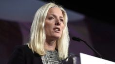 For the second time in a week, the federal environment minister has suggested the Liberal government is prepared to tap the brakes on its aggressive climate change agenda in the interests of national unity.