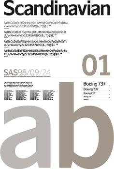 SAS Type — Stockholm Design Lab