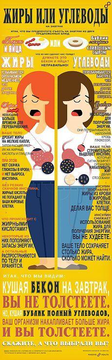 ИНФОГРАФИКА: Жиры или углеводы? - Лайфхакер