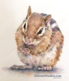 """""""Charles Chipmunk"""", watercolor chipmunk painting by animal artist Teresa Silvestri.  Original sold, but prints & cards available.  Photo reference thanks to Marilee Hierlihy."""