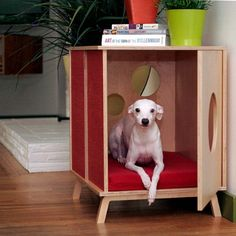 @Maria Fé / Layers of Meaning Blog - I can so see you having this for Nico ;)     Mid Century Modern Dog Furniture