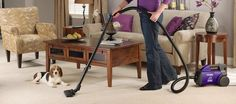 Best Vacuum For Pet Hair Review And Guide