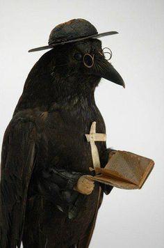 #crows #ravens #dark crows #mystic animals #dark arts #eagles #animals in art