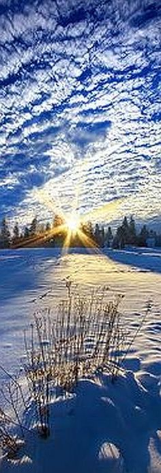 Born As We Are #photo by Phil~Koch #clouds sky sunset winter snow blue white landscape nature amazing beautiful reflection sunshine