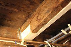 home repairs,home maintenance,home remodeling,home renovation Repair Floors, Wood Repair, Home Renovation, Home Remodeling, Termite Damage, Foundation Repair, House Foundation, Floor Framing, Home Fix