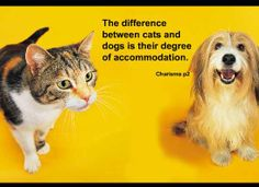 """""""The difference between cats and dogs is their degree of accommodation.""""   From Michael Grinder's book:  Charisma"""