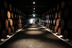 Port Wine Cellar, Sandeman, Porto, Gaia, Portugal