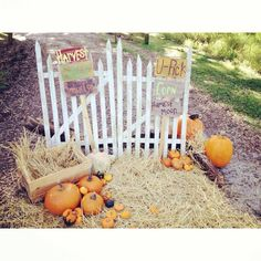 Cute photo backdrop for kids!!! Idea for the fall!!