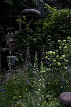 Chelsea Flower Show 2013 - NSPCC Garden of Magical Childhood