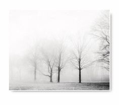 Minimalist  Fog and Trees Photo, black and white foggy landscape, fine art photography, grey, gray, home decor, living room decor, modern
