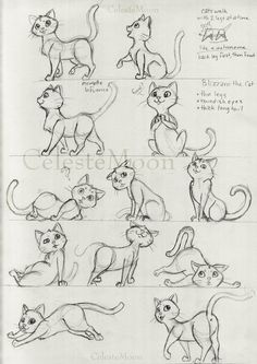 Blizzard the Cat Concept Poses by CelesteMoon on DeviantArt - Katzen Cat Drawing Tutorial, Drawing Tutorials, Drawing Ideas, Cartoon Tutorial, Cat Sketch, Drawing Sketches, Drawing Art, Drawing Poses, Life Drawing