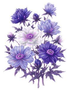Картинки цветы PNG,GIF. Обсуждение на LiveInternet - Российский Сервис…
