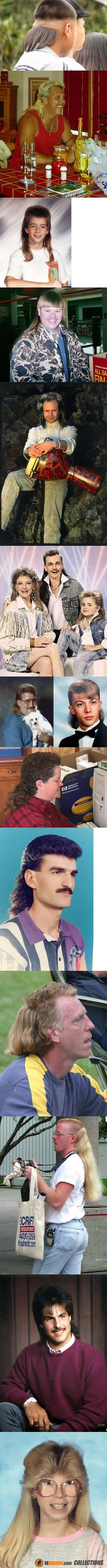 Horror Mullet Picture Show...most of which can be seen at any time at your nearest WalMart!