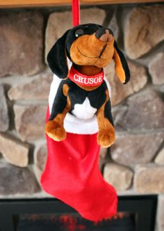 Give the gift of the Crusoe Plush Toy! :)