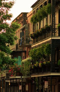 New Orleans French Quarter. Best food, music and charm!