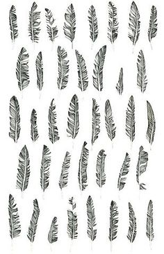 i love feather tattoos