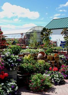 Flowers and pottery look beautiful!  Check out our website for coupons!  www.shadybrookfarm.com