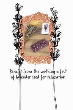 Benefit from the soothing effect of lavender seed for relaxation with lavender eye pillow. #lavender #eyepillow #yoga Lavender Pillow, Lavender Seeds, Benefit, Vintage World Maps, Meditation, Relax, Yoga, Pillows, Eyes