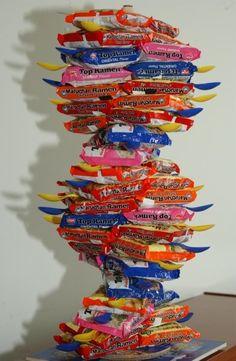 Impressive balance --> Ramen noodle DNA model... aka the life of a poor college science major