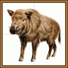 tematicheskaya nedelya jivotnie lesa15 Educational Games, Animals, Animales, Learning Games, Animaux, Animal, Animais