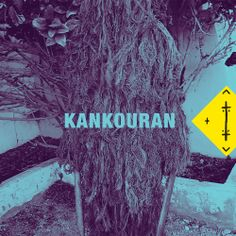 365 Songs For 365 Days: DAY 364 KANKOURAN