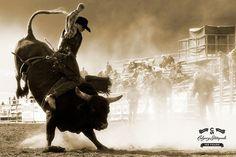 bull rider by Neville Palmer