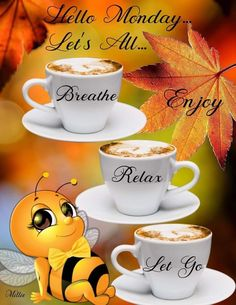 Happy first day of Autumn 🍁🍂🍁🍂 everyone! Wish you all a healthy and blessed one!🙌 Have a wonderful Monday everyone ☕️🌻😘