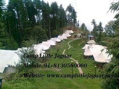 Call @ 91+9999600365, Camp kantal is that the best placed camp in Danaulti Uttarakhand. It is compared to a paradise in matters of Natural beauty and also the comforts that it's to supply to any or all the guest frequenting this small city on the the Himalaya. The camp gets it share of snow each year and takes a white blanket each winter.  Website: http://camplittlejaguar.in/