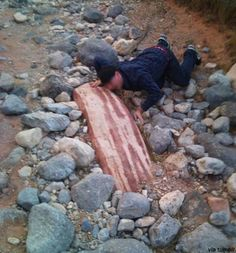 bacon rock~