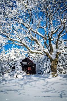 Winter Landscape by Robert Rieger - Photo 140987605 - 500px