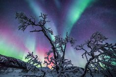 Northern Lights in Norway ... by Checkmydream on 500px