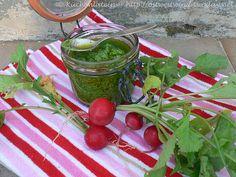 Pesto vom Radieschengrün