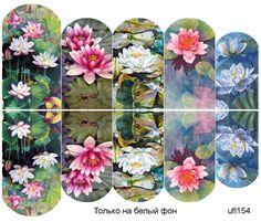 Слайдер-дизайн премиум, Цветы ufl154 - 1