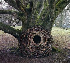 Le Land Art magique de Andy Goldsworthy (7)