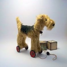 Northfield Primitives - Airedale? Welshie? Who cares ... it is a TERRIER :0)