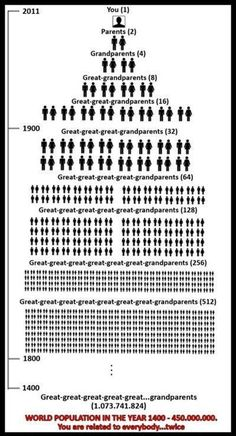 Geneology or otherwise known as ancestry. The More You Know, Good To Know, Weird Facts, Fun Facts, That's Weird, The Meta Picture, Family Genealogy, Genealogy Chart, Genealogy Forms