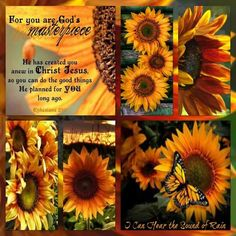 For you are Gods. Sunflower Quotes, Sunflower Pictures, Sunflower Facts, Sunflowers And Daisies, Yellow Flowers, Bible Art, Bible Verses, Inspirational Scriptures, Ephesians 2 10