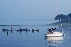 Maine Morning  photo by sandra goroff (c) sgma@aol.com