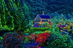 Best places to see Christmas lights in Oregon.