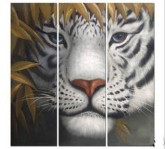 """THE GAZING WHITE TIGER"""