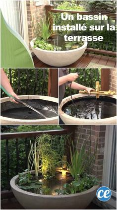 Creative Casa: Backyard Pond Ideas for your home. Beautiful Planted Zen Container Pond garden decor Creative Casa: Backyard Pond Ideas for your home. Patio Pond, Diy Pond, Backyard Landscaping, Backyard Ponds, Backyard Patio, Diy Patio, Patio Gardens, Large Backyard, Small Patio