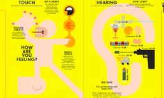 Senses infographic. Illustration by Peter Grundy