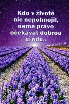 Kdo v životě nic nepohnojil, nemá právo očekávat dobrou úrodu...