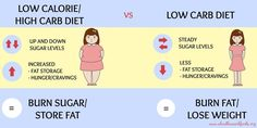 The low carb way to lose weight of restricting carbohydrates results in significantly more weight loss than the standard restriction of calories and fat. Lose Baby Belly, Reduce Belly Fat, Fat Belly, Lose Stomach Fat Workout, Belly Fat Workout, High Carb Diet, Low Carbohydrate Diet, Lose Weight Naturally, How To Lose Weight Fast