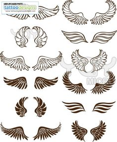 17 Best Wing Images Angel Wings Wings Drawing Angel Wings Drawing
