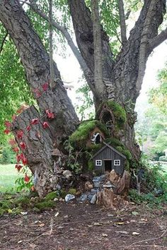 love the way this faery house is wedged in between the