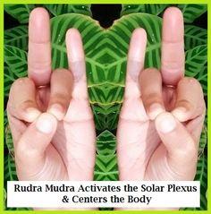 Ruda Mudra for Solar Plexus & More